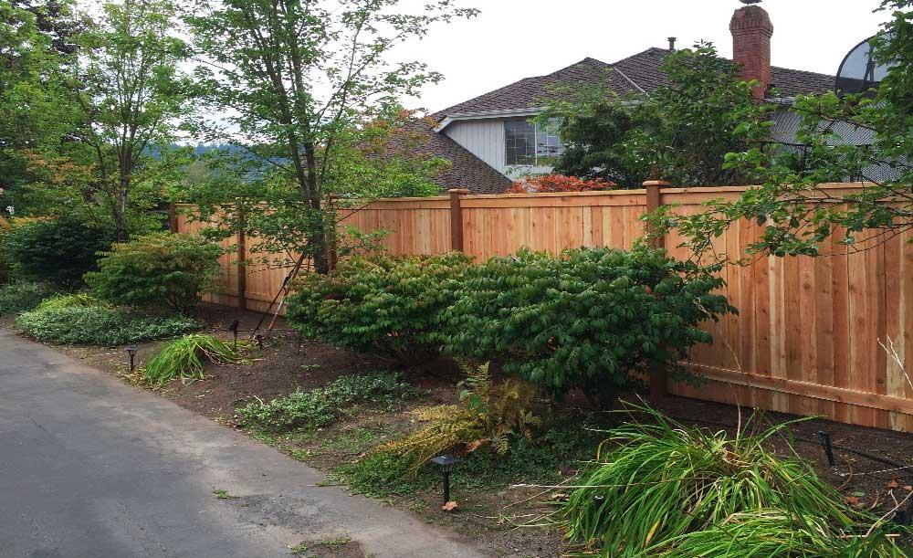 Modified Panel style cedar fence (backside)