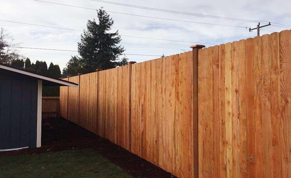 Dog-eared style cedar fence